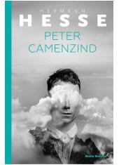Peter Camenzind - okładka książki
